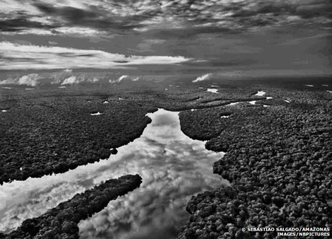 Amazon (c) 2011 - Sebastio Salgado